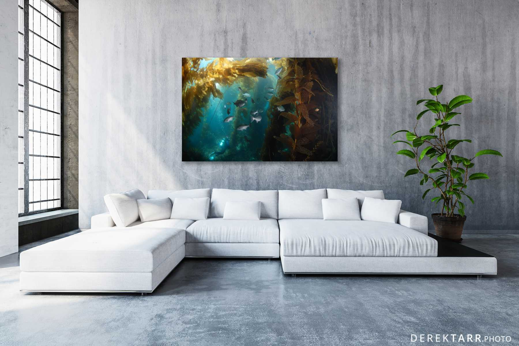 Modern living room with Halfmoons in the Kelp on the wall