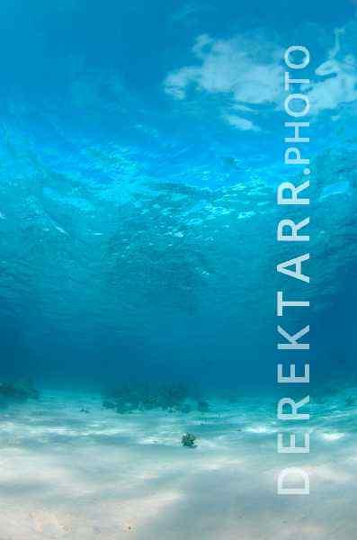 """Blue"" - fine art underwater photograph of clear blue water in Fiji"