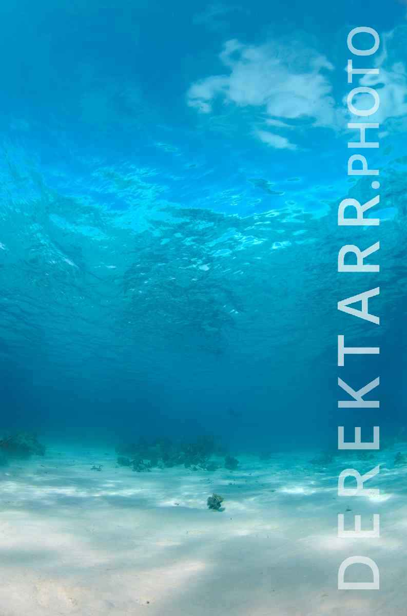 "large view of ""Blue"" - fine art underwater photograph of clear blue water in Fiji"
