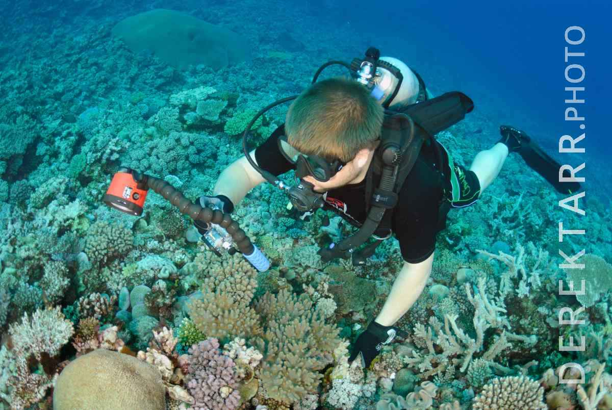 large view of Diver Taking Pictures of Coral off Kadavu Island in Fiji
