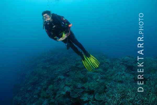 Female Diver Over Coral at Manta Reef