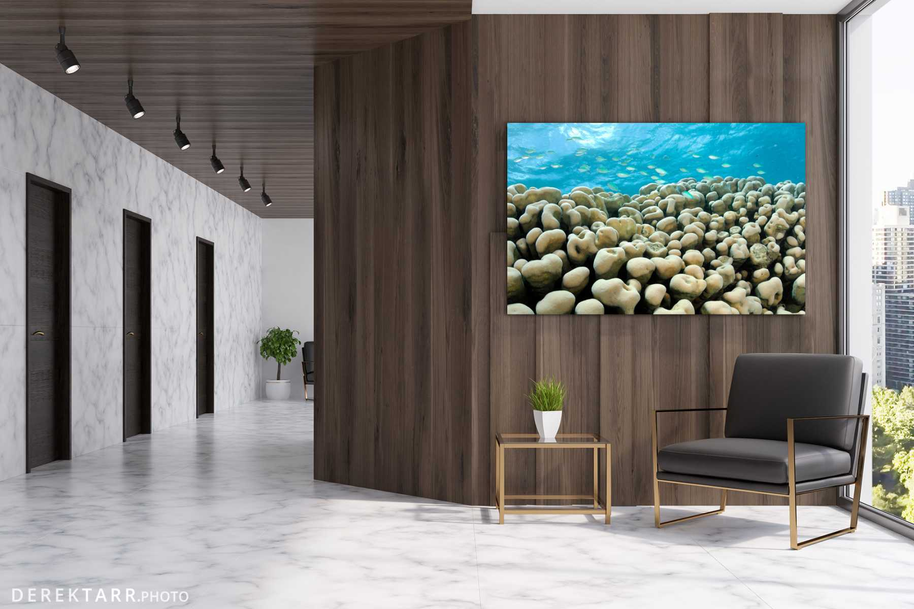 Office hallway with Green Chromis on Coral shown on wall