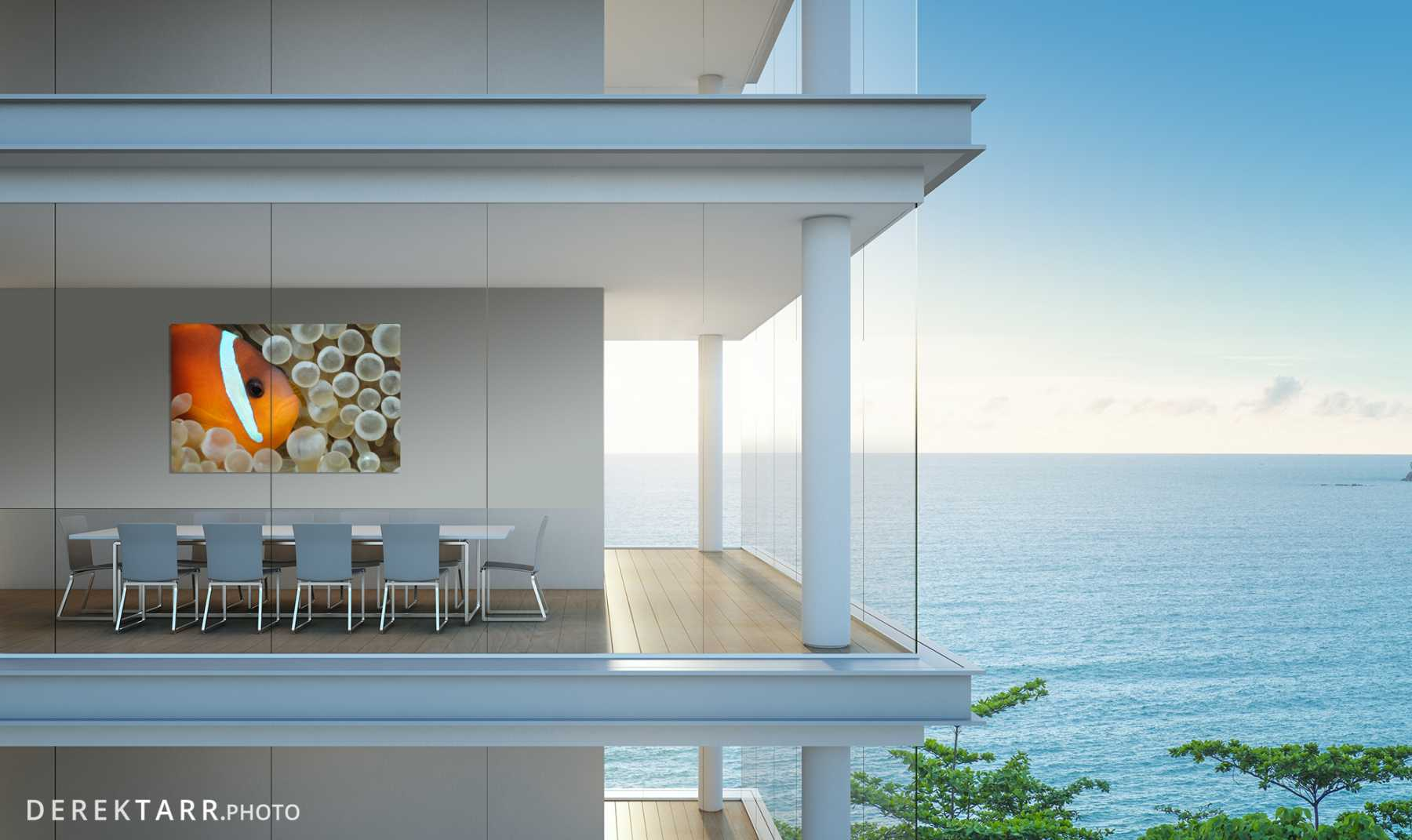 Modern ocean front home with Clownfish in Bubble-Tipped Anemone