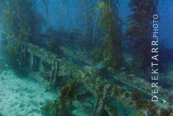 Sunken Swim Platform