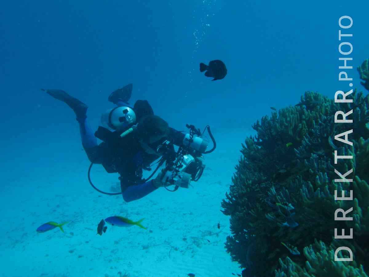 large view of Derek Photographing Macro Life in Fiji