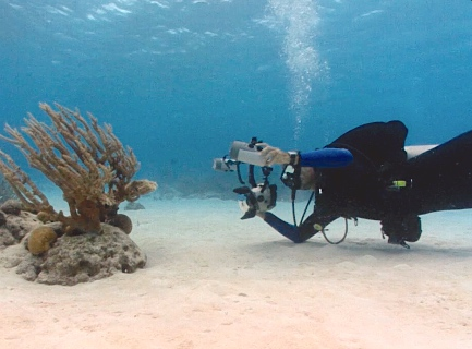 photo of Derek underwater photographing coral in Fiji